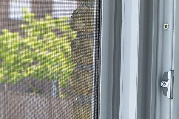 detailaufnahme-Insektenschutz-Rollo